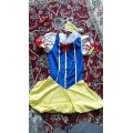 Sexy Snow Princess Design 2 Halloween Fancydress Hen Night Costume One Size 8-12