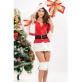 Hooded Fur Trim Velvet Santa Dress