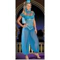 Genie Princess Costume 8-10