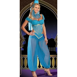 Genie Princess Costume 8-10