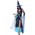 Adult Fabulous Witch Costume BLUE Medium 10-12