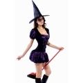 2 Pc Sorceress Purple/Black Witch Costume
