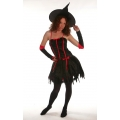 Fashion Witch Costume
