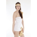 Spartan Princess Costume  one size